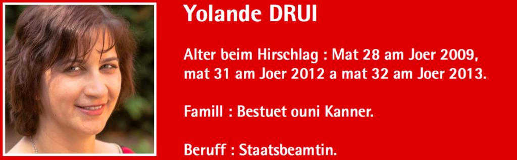 05_drui_header